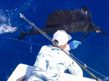 Caribbean Fishing Academy Charters