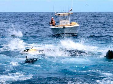 Panama Sportfishing Lodge, Boca Chica