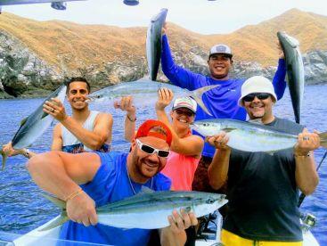 Yellowfin Sportfishing - The Online