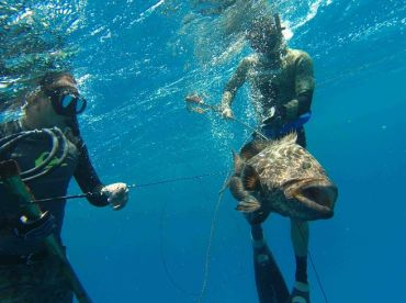 Spearfishing Today – Cozumel
