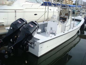 28 ft Super panga twin motors