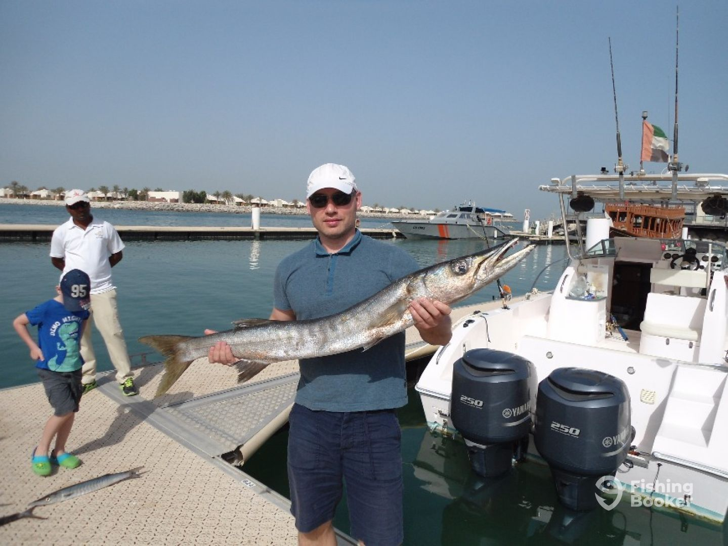 Large barracuda
