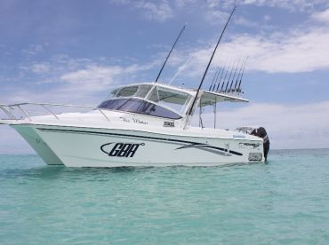 GBR Sport Fishing Charters Cairns