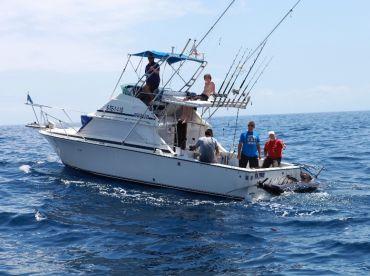 No limits with a 700lb blue marlin