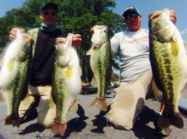 3 bass over 9lbs in one day guided trip