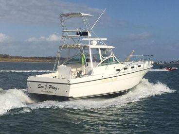 SeaPlay Sportfishing - SeaPlay V