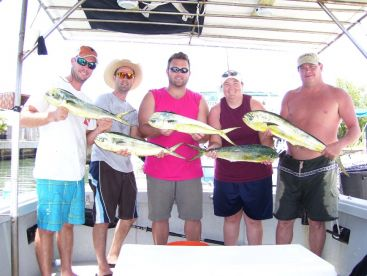 Mahi for everyone. Plus a bunch in the cooler. What a great day.