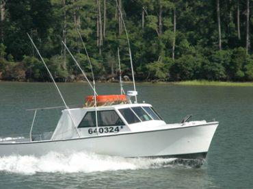 Fish Screamer III