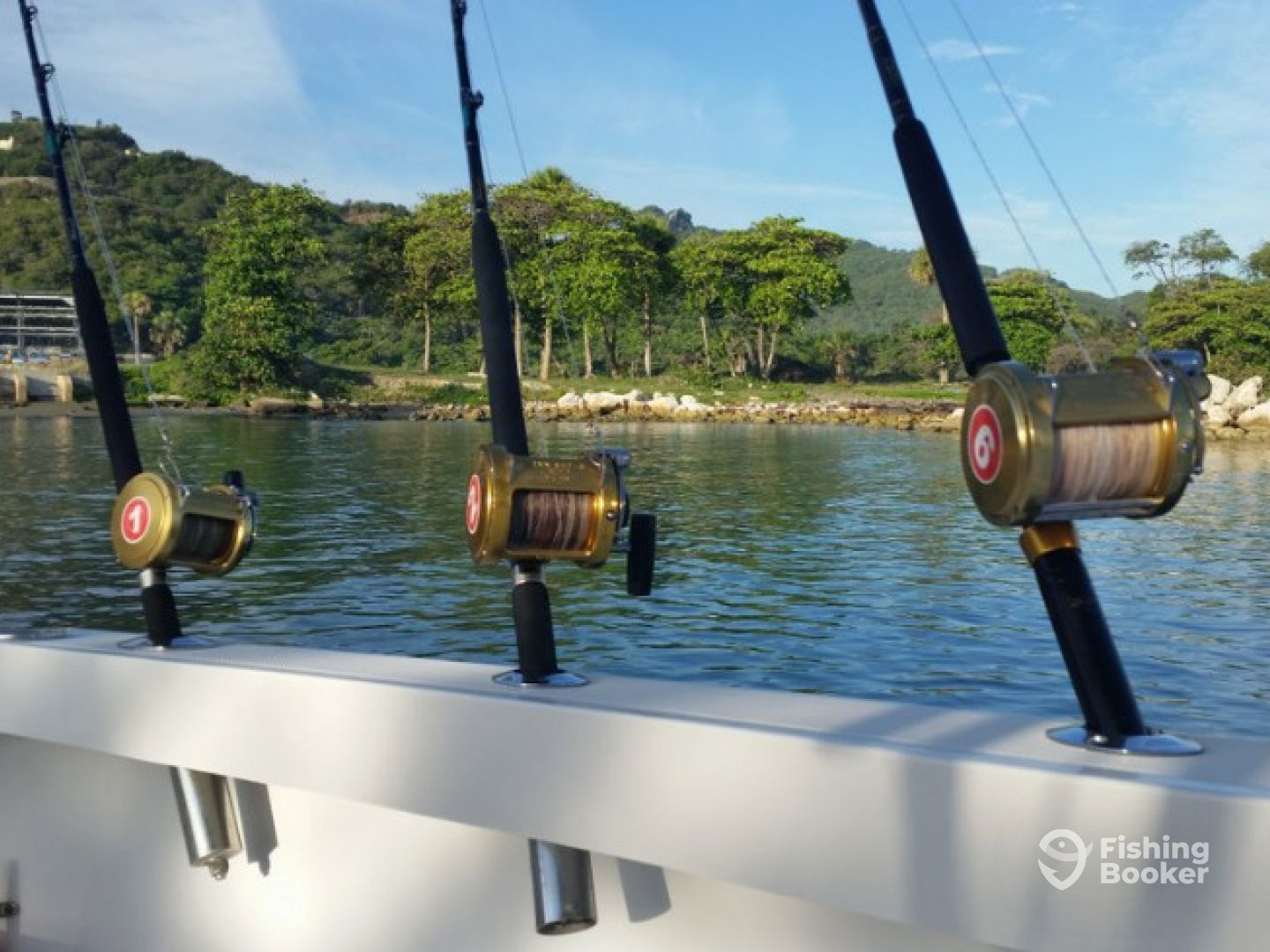 Buscapie charters fishing time punta cana dominican for Fishing in punta cana