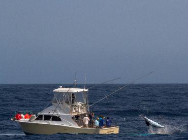 Cape Verde Marlin-33' NHA Cretcheu, Mindelo