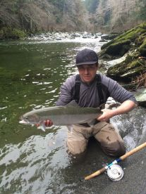 Fresh steelhead fish from the Cowichan River caught December 2015