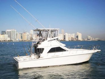Sea Hawk Fishing Charters