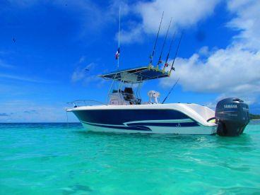 Panama GEM Charters - 27' Proline