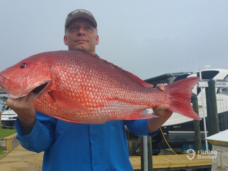 Lost Bay Fishing No Catch No Pay Orange Beach Al