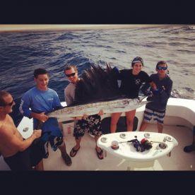 caribsea catching sailfish