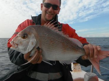 Red Snapper, common in the Winter season