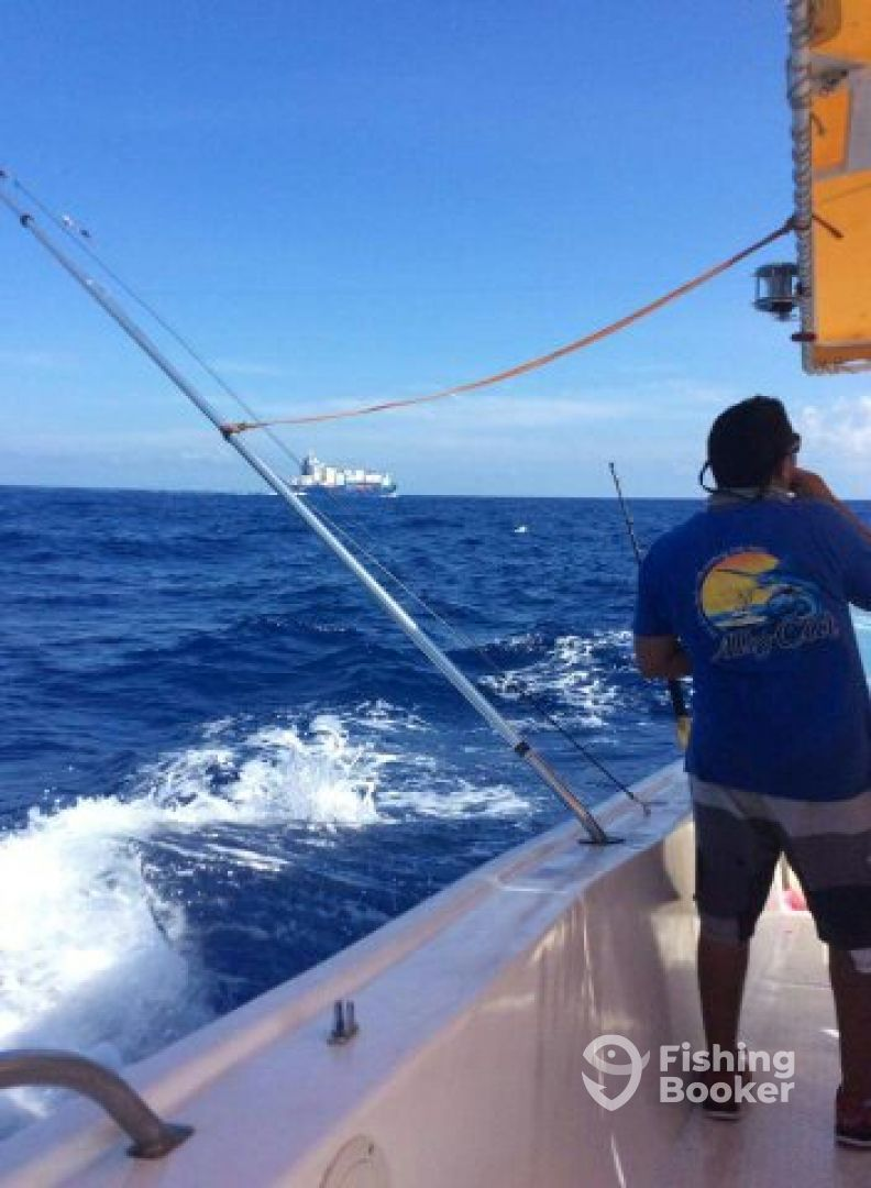 Miss noemi charters isla mujeres mexico fishingbooker for Isla mujeres fishing
