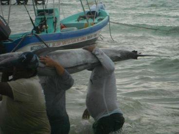 Playa del Carmen fishing crew       and one small catch of the day...!!!!