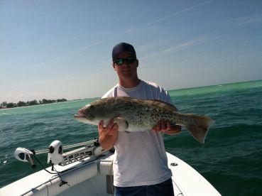 Gag grouper good eating!