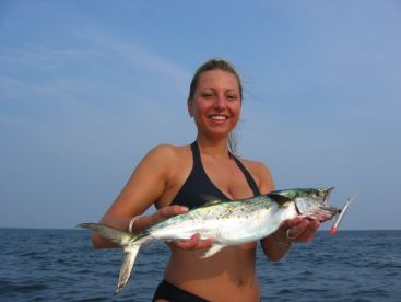 Citation Spanish Mackerel