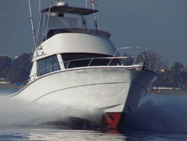 Red Tide Charters Puerto Banus