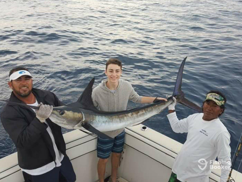 Picudo sport fishing cabo san lucas mexico fishingbooker for Cabo san lucas fishing charters prices