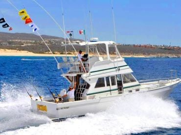 Picudo Sport Fishing