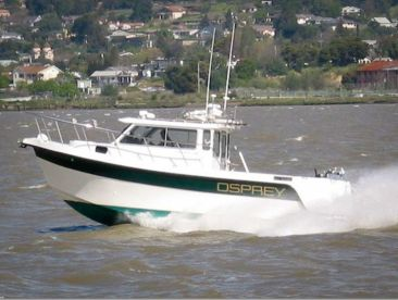 Osprey Fishing Charters - SF Bay