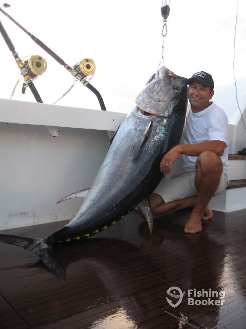 Big Game Angeln auf Thunfish