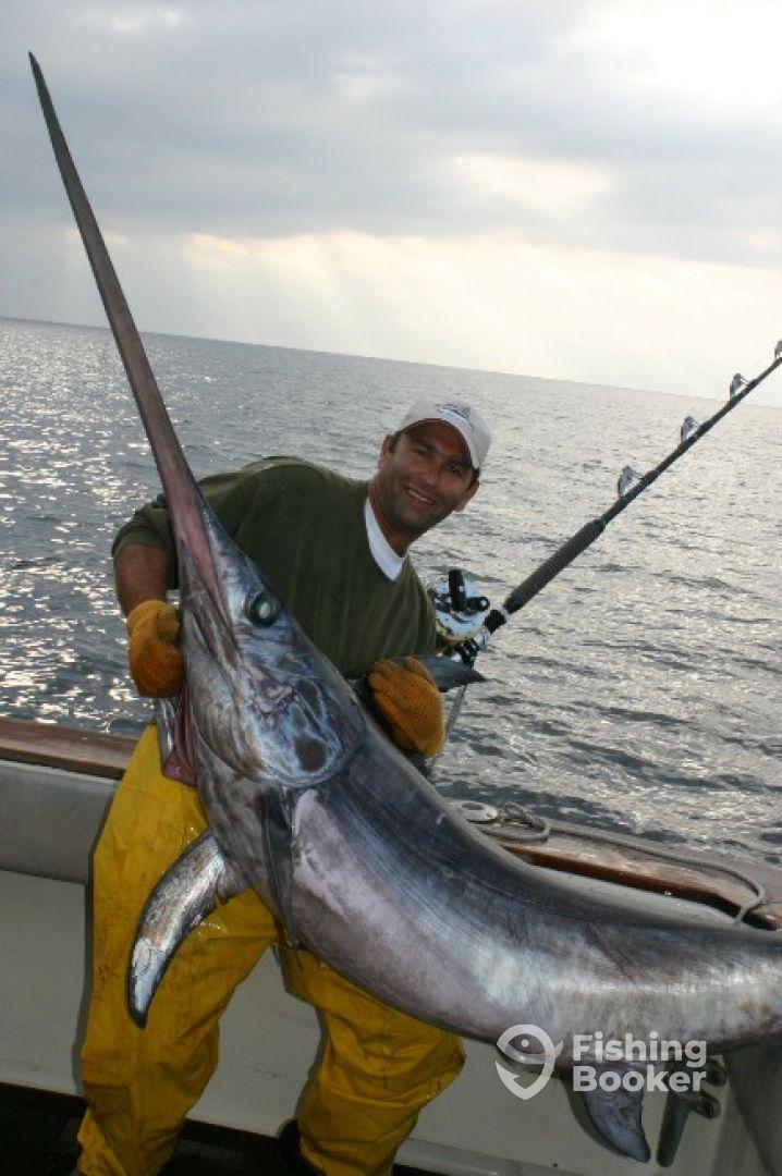 Big Game fishing Schwertfisch Adria