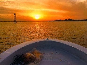 Bayside Fishing Charters 2