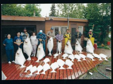 HALIBUT LIMIT