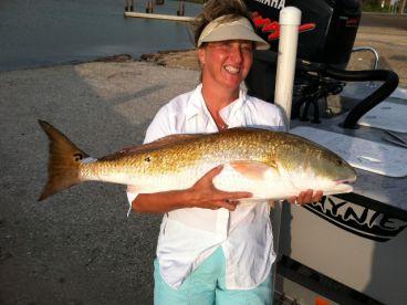 Look I caught a big redfish!!