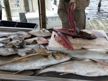 Your catch will be cleaned and filleted at the end of the day