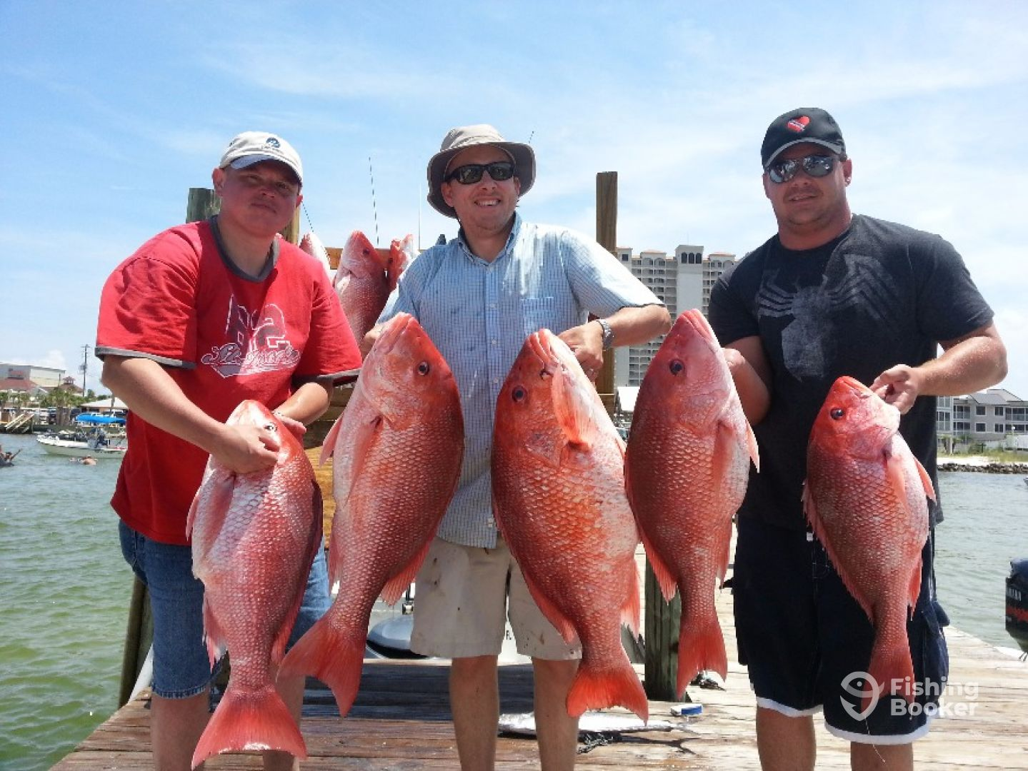 Excellent grade a red snapper