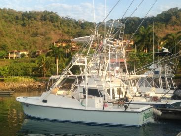 Sportfishing on the Predator, Jaco