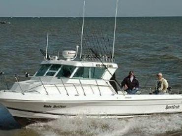 Erie Drifter Sportfishing & Lodging, Oak Harbor
