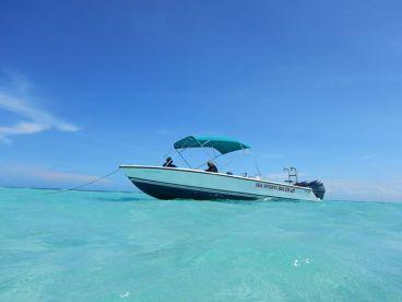 Good Ting Sea Sports