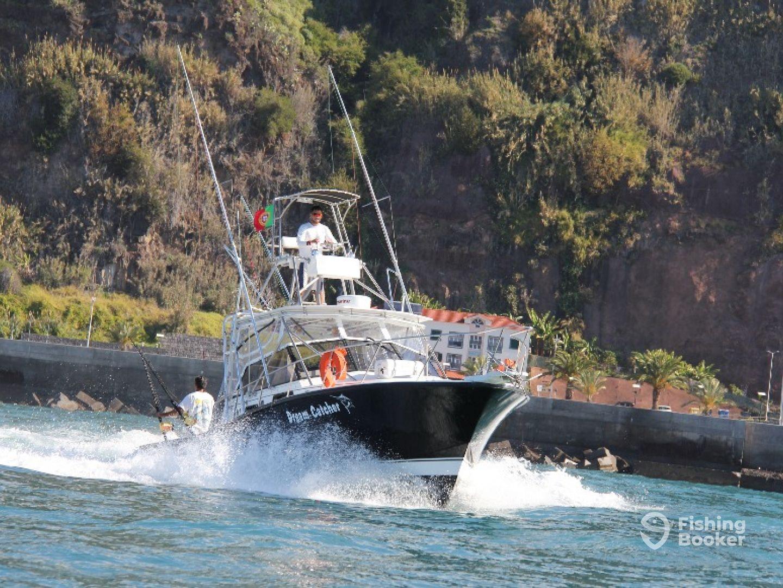 Dream Catcher Madeira
