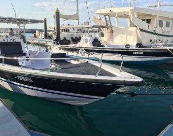 Boat Pilot Passenger Yachts & Boats, Dubai