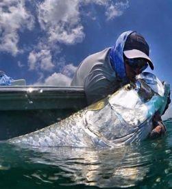 Snook and Tarpon Fishing Charters