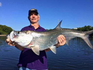 Backwater II Tarpon Fishing PR