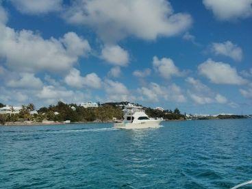 Sanctuary Marine Bermuda Hamilton Bermuda FishingBooker - Trips to bermuda