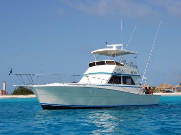 Fish Charter Curacao - Bar Four