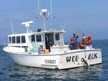 Weejack fishing charters montauk ny fishingbooker for Fishing boats ny