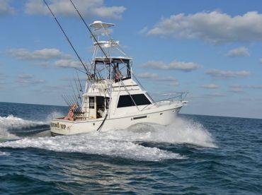 Round Up Fishing Charters, Key Largo