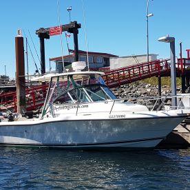 Island Pursuit Sport Fishing - 25'