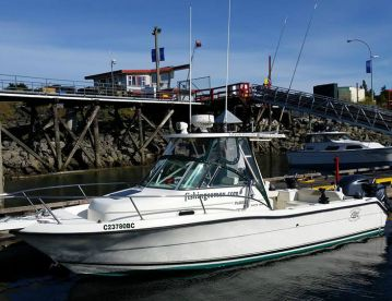 Island Pursuit Sport Fishing , Comox