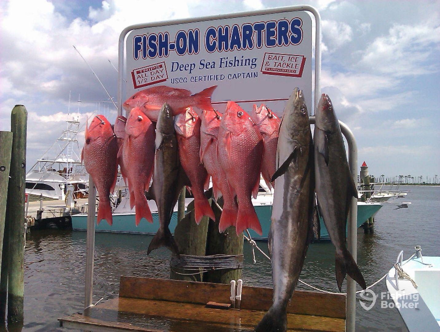 Fish on charters biloxi ms fishingbooker for Fishing in biloxi ms