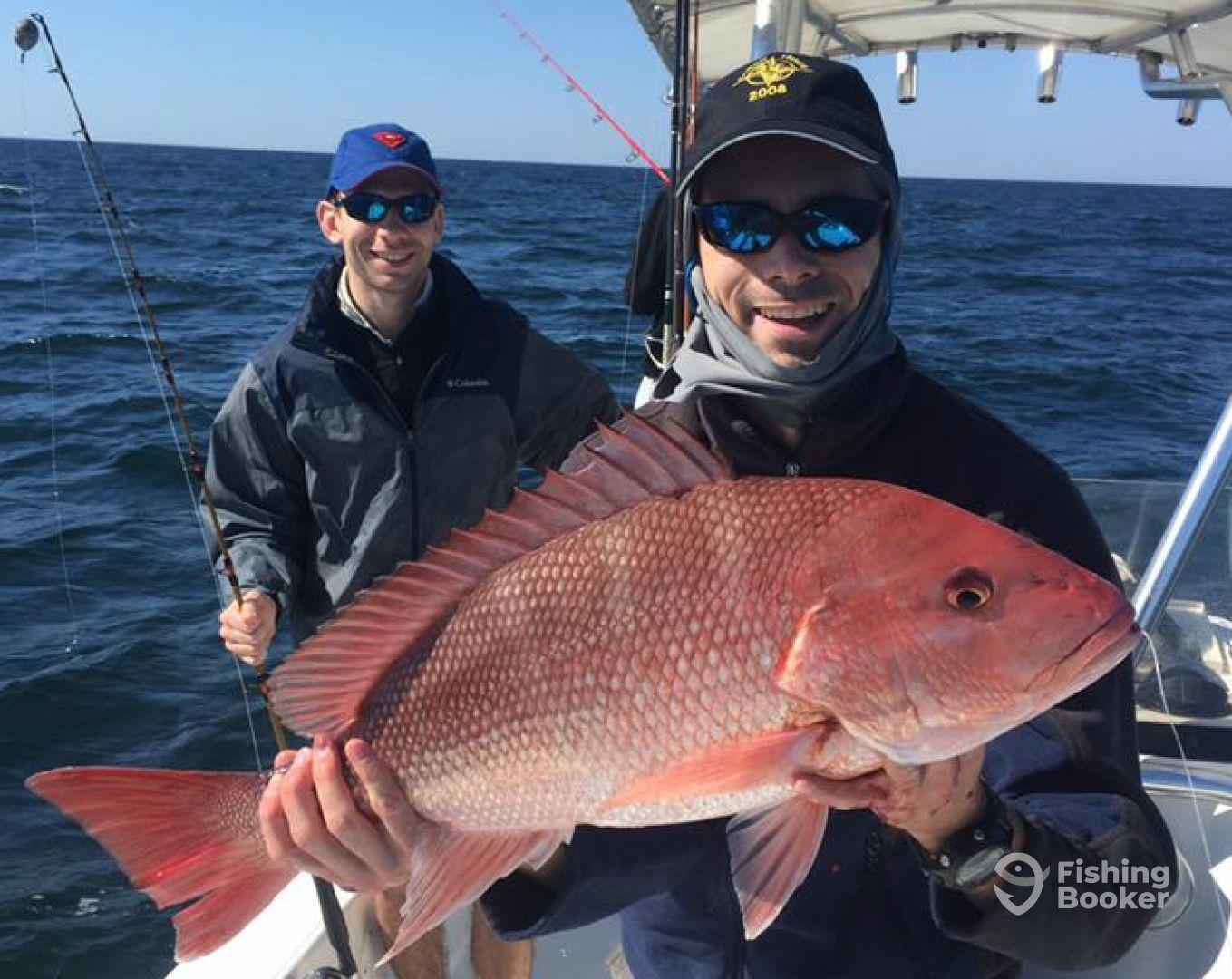 Pensacola beach fishing charters pensacola beach fl for Fishing charters pensacola
